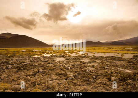 Salt crust at the shore of Lagoon and salt lake Tuyajto at an altitude of 4300m, Altiplano (high Andean Plateau), Los Flamencos National Reserve, Atac - Stock Photo