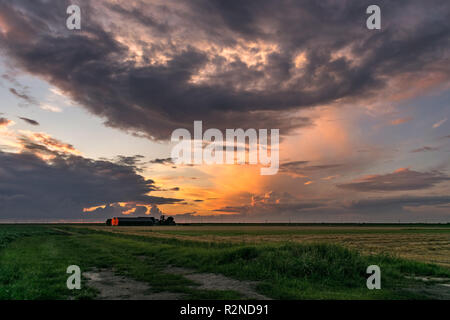 A farm and distant storms in Holland are illuminated by the light of the setting sun. This is the wide open landscape in the Green Heart of Holland. - Stock Photo