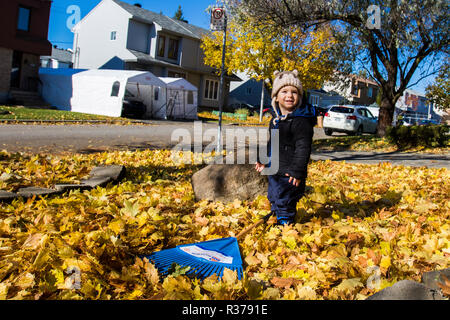 cute baby boy in autumn - Stock Photo