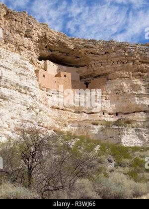 Arizona, Montezuma Castle National Monument, five-story 20 room cliff dwelling built in limestone cliff - Stock Photo