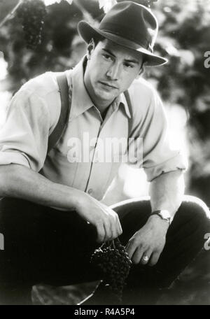 American actor Keanu Reeves in the movie A Walk in the Clouds, 1995 - Stock Photo