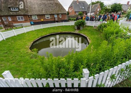 Nordfriesland, Water tank of the throwing Hallig Oland, Wasserspeicher der Warft Hallig Oland - Stock Photo