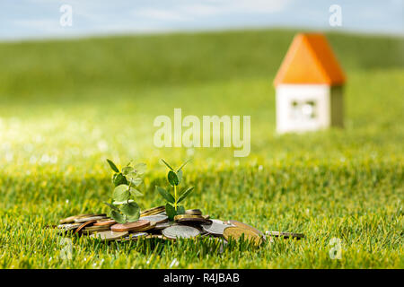 Plant growing in Coins glass jar for money on green grass - Stock Photo