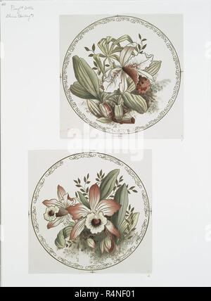 vintage garden element graphic illustration from either vintage art or theatrical design old classic illustrated flowers, trees, bushes plants etc - Stock Photo