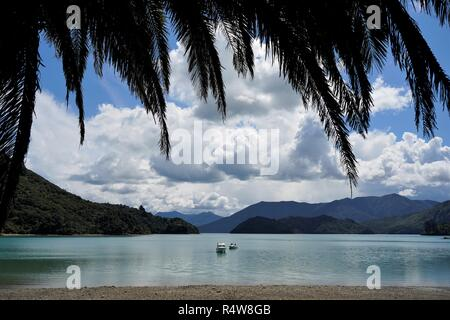 Two boats in the lake, mountains in the background, framed by the palm leaves, New Zealand South Island - Stock Photo