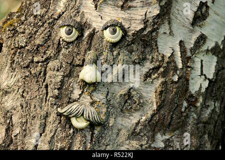 tree face with old bark - Stock Photo