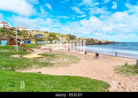Coldingham Bay, Coastal Path, Scottish  Borders, Scotland, UK - Stock Photo