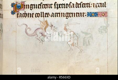 Man fighting a dragon. Queen Mary Psalter. England (London?); circa 1310-1320. (Miniature only) Bas-de-page scene showing a man, with sword and small round shield, fighting a dragon.  Image taken from Queen Mary Psalter.  Originally published/produced in England (London?); circa 1310-1320. . Source: Royal 2 B. VII, f.163. Language: Latin. - Stock Photo
