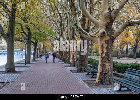 Berlin,Alt-Tegel, .Arcade of trees over Greenwich Promenade next to Tegel Lake in Autumn - Stock Photo