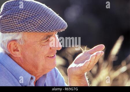 Portrait, Nahaufnahme, Profil, weishaariger Senior, ca. 75 Jahre alt, bekleidet mit blauem Hemd und Kappe, beobachtet einen Grashuepfer auf seiner Hand - Stock Photo