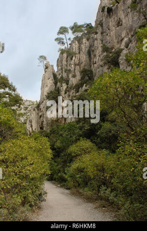 Walkway hiking track in lush green forrest in southern france with limestone cliffs. - Stock Photo