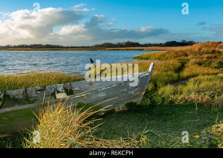 Landscape photograph of wetland foreshore with front end of abandoned wood boat in foreground. - Stock Photo