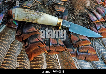 Fixed blade damascus knife displayed on turkey feathers - Stock Photo