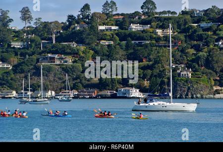 richardsaon bay kayaks, sausalito, usa , ca - Stock Photo
