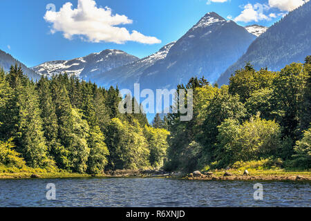 On a sunny, forested shore in British Columbia , a river mouth hints at the valley behind, cutting deep into the snow-topped Coast Mountains (summer). - Stock Photo