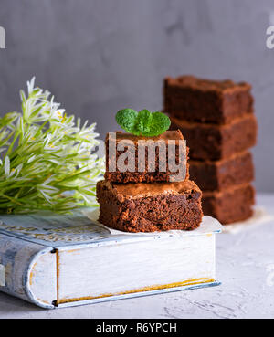 a pile of square pieces of chocolate brownie with a sprig of mint - Stock Photo