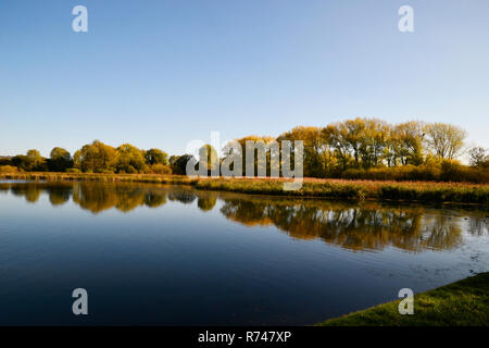 Reflections of trees in Tring Reservoirs Aston Clinton, UK - Stock Photo