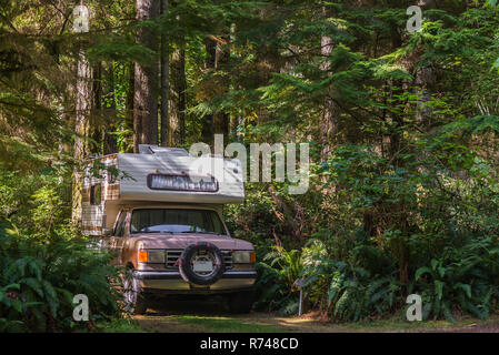 Camper van parked on forest track, Quadra Island, Campbell River, Canada - Stock Photo