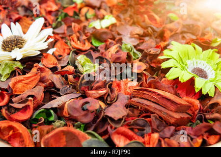 Multicolored dried flowers, used for soaps and perfumes as well as coloring, dyes and as an ingredient in foods - Stock Photo