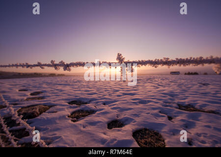 barbed wire fence in beatiful winter morning sunrise with frost and fresh snow representing imigration and security problem - Stock Photo