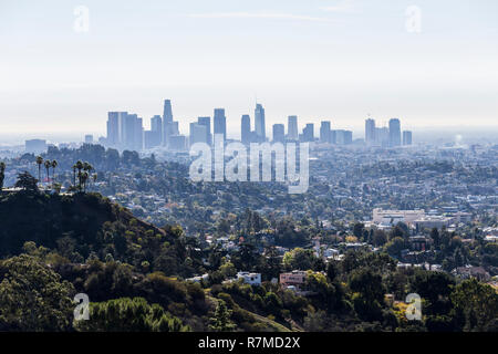 Morning skyline view of downtown Los Angeles from popular Griffith Park near Hollywood California. - Stock Photo
