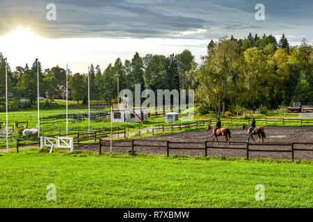 Two female equestrians ride thoroughbred horses on a horse farm in late afternoon at the town of Sipoo Finland - Stock Photo
