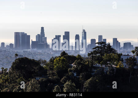 Morning view of tree covered hilltop and downtown Los Angeles from popular Griffith Park near Hollywood California. - Stock Photo