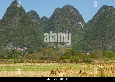 Green hills along golden farmland in Yangshuo, China. Haystacks in foreground. - Stock Photo