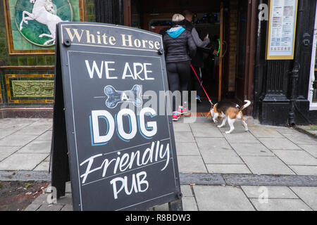Dog,dogs,okay,friendly,pub,bar,public house,White Horse,in,centre,of,Aberystwyth,town,Ceredigion,coast,coastal,Cardigan Bay,Wales,Welsh, - Stock Photo