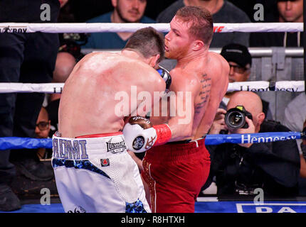 New York, New York, USA. 15th Dec, 2018. CANELO ALVAREZ (red trunks) and ROCKY FIELDING battle in a WBA (Regular) Super Middleweight title bout at Madison Square Garden in New York, New York. Credit: Joel Plummer/ZUMA Wire/Alamy Live News - Stock Photo