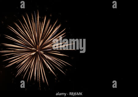 White starburst firework in black sky on the Fourth of July - Stock Photo