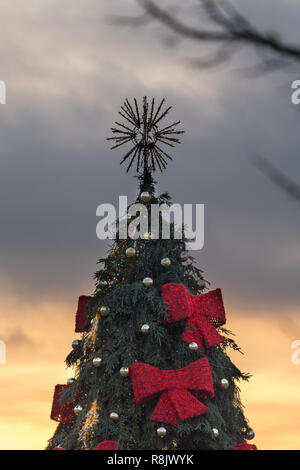 VILNIUS, LITHUANIA - DECEMBER 26, 2017: Decorated and illuminated Christmas tree during sunset at the Town Hall Square, Lithuania, Baltic states - Stock Photo