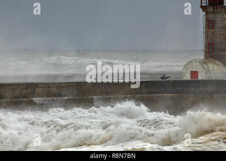 Porto, Portugal - February 7, 2016: People looking at storm in the mouth of Douro river - Stock Photo