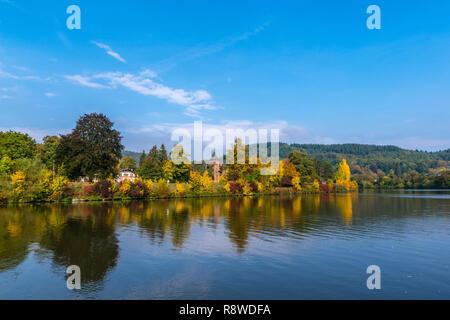 Fall foliage along the Saar river at Mettlach, Merzig-Wadern, Saarland, Germany, Europe - Stock Photo