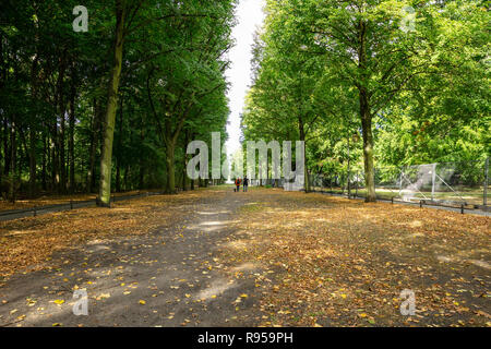 Healthy lifestyle concept. Tiergarten park with lush flora, falling leaves and walking people. Autumn nature in Berlin background. - Stock Photo