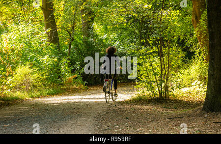 Healthy lifestyle. Woman is riding a bike in a path of Tiergarten park, between green trees, Berlin, Germany. Nature background. - Stock Photo