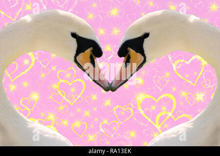 Valentines day concept, two swans making a heart shape together isolated on a pink background with golden sparkling hearts - Stock Photo