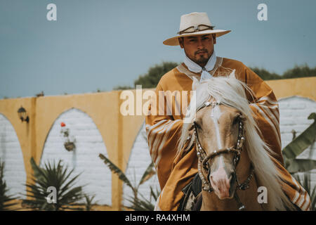 TRUJILLO, PERU - SEPTEMBER 2018 : Cowboy on horse in Peru, riding towards camera, viewed in close-up from the front with copy space - Stock Photo