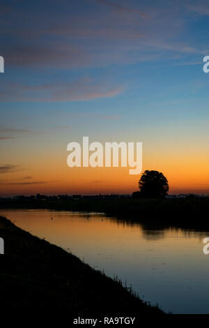 Lone tree near a river with bright twilight colors in the sky, photographed between the cities of Leiden and Gouda, Netherlands. - Stock Photo
