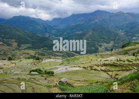 Royalty high-quality free stock image of beautiful terraced rice fields on rain season in Northern Vietnam. - Stock Photo