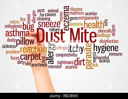 Dust mite word cloud and hand with marker concept on white background. - Stock Photo
