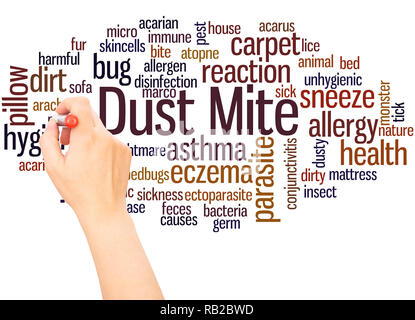 Dust mite word cloud hand writing concept on white background. - Stock Photo