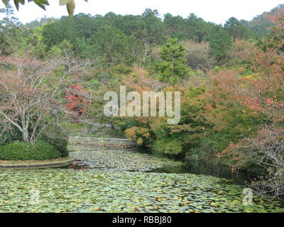 View of the Kyoyochi Pond at Ryoan-ji Temple Gardens, Kyoto: autumn 2018 - Stock Photo