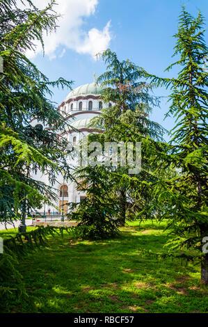 Belgrade, Serbia - June 09, 2013: Famous Saint Sava church exterior facade architecture view through vibrant green spruce trees in Belgrade, Serbia - Stock Photo