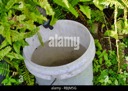 bucket collecting water from dripping garden faucet / tap - Stock Photo