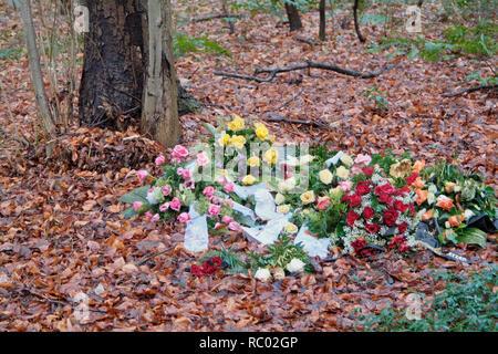 Südwest Kirchhof Stahnsdorf, Urnenhain, Berlin, Deutschland, Europa | Southwest Churchyard Stahnsdorf, Südwest Kirchhof, Berlin, Germany, Europe - Stock Photo