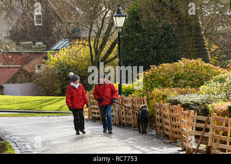 Couple (mature man & woman) chatting together, walking dog on lead in rain & sleet on cold wet day - Museum Gardens, York, Yorkshire, England, UK. - Stock Photo