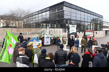 Erfurt, Germany. 17th Jan, 2019. Thuringian farmers protest in front of the Thuringian parliament against the sale of land to investors. They are also taking part in a demonstration on 19 January in Berlin. Credit: Martin Schutt/dpa-Zentralbild/dpa/Alamy Live News - Stock Photo