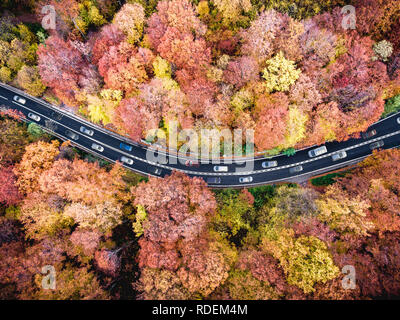 Heavy traffic on a highway trough the forest with cars stuck in a traffic jam road in the mountains - Stock Photo