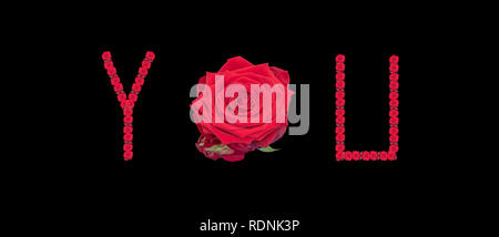 Fine art still life color image of the word YOU constructed from floral/flower characters/letter/font made of rose blossom macros on black background - Stock Photo